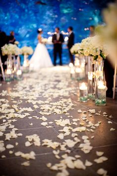 1000 Images About Seattle Wa Wedding Venues On Pinterest