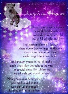 Our first Christmas without you is so hard. Love and miss you, Gracie girl.