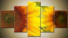 Květy F1011 - Moderní obraz 3D
