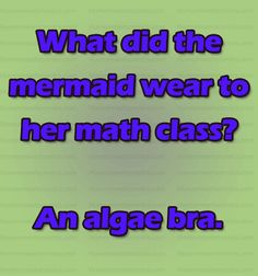 What did the mermaid wear to her math class? An algae bra. Funny Questions, Math Humor, Math Class, I Laughed, Mermaid, Language, Bra, Words, How To Wear