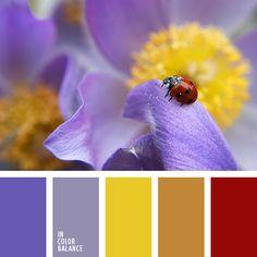amarillo y malva, amarillo y marrón, amarillo y rojo, amarillo y violeta, marrón y amarillo, marrón y malva, marrón y rojo, marrón y violeta, rojo y amarillo, rojo y malva, rojo y marrón, rojo y violeta, violeta y amarillo, violeta y malva, violeta y marrón, violeta y rojo.