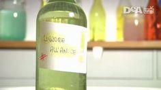 Ricetta: liquore all'anice fatto in casa