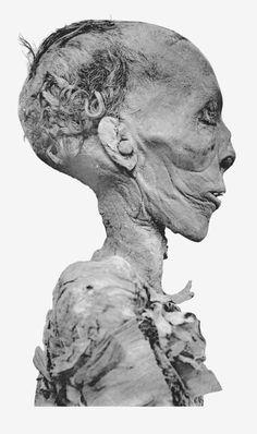 File:Thutmose II mummy head profile.png