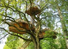 The Cabin in the air -The Mad Oak Treehouse - Great family cabin, France - Basse-Normandie