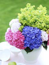 Inspiration pour un bouquet d'hortensias