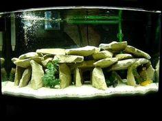 African Cichlid Aquarium - YouTube #TropicalFishKeeping #TropicalFishAquariumIdeas