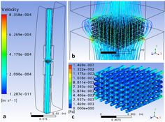Modeling of the Flow within Scaffolds in Perfusion Bioreactors