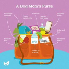 who ever said we aren't moms!!!! this is practically my purse when we go places!! At least the toy, water/food portion is.....