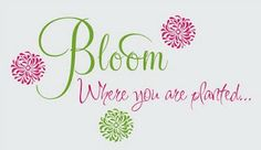 Items similar to Bloom Where You are Planted - vinyl wall design and graphics on Etsy Inspirational Wall Art, Inspirational Thoughts, Bloom Where Youre Planted, Relief Society Activities, Vinyl Wall Quotes, Visiting Teaching, Letter Wall, Spiritual Inspiration, Wall Signs