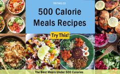 500 Calorie Meals Recipes