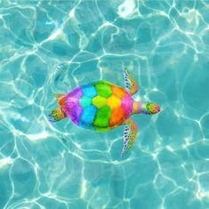 Turtle in teal rainbow art, rainbow unicorn, rainbow colors, rainbow stuff, Baby Animals Super Cute, Cute Little Animals, Cute Funny Animals, Baby Animals Pictures, Cute Animal Pictures, Rainbow Art, Rainbow Colors, Rainbow Stuff, Rainbow Unicorn