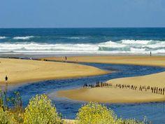 Réserve Naturelle du Courant d'Huchet: L'embouchure - France-Voyage.com