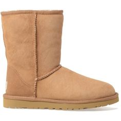 UGG Boots ($135) ❤ liked on Polyvore featuring shoes, boots, ankle booties, shoes - boots, brown, brown booties, brown bootie, short boots, brown boots and ugg australia