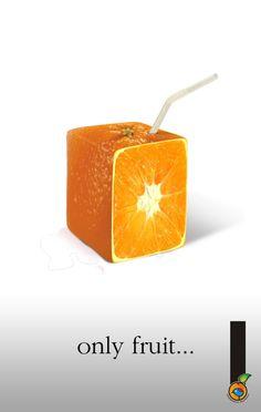 Cooperativa Frutícola 2