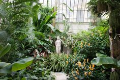 Résultats Google Recherche d'images correspondant à http://i-cms.linternaute.com/image_cms/original/985063-le-jardin-d-hiver.jpg