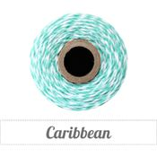 Image of Caribbean - Teal & White Baker's Twine