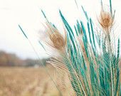 Wheat & Feather Spray