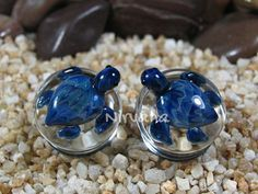 I may have found the plugs for your wedding...Hey, I found this really awesome Etsy listing at https://www.etsy.com/listing/207141213/exotic-blue-turtle-pyrex-glass-plugs-2g
