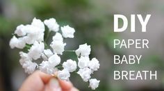 DIY paper baby breath flower from tissue paper, SUPER SIMPLE and REALISTIC - YouTube