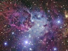 Fox Fur Nebula Fotografie-Druck