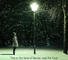 This Is Narnia