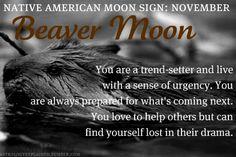 Native American Moon Sign: November Beaver Moon