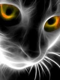 12 Best Neon Cat Images Fractals Cat Art Fractal Art