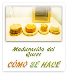 Cheese Recipes, My Recipes, Queso Cheese, Queso Fresco, How To Make Cheese, Yogurt, Tofu, Butter, Recipes