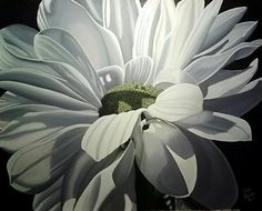 Ellen Macioce - True White- Acrylic
