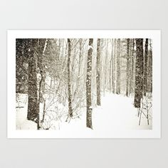 Wintry Mix Art Print by Olivia Joy StClaire - $19.00, woodland art, trees, nature photography, society6, rustic, winter, gift, decor, snow, black and white