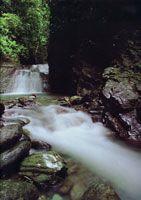 La serranía del Darién es una estructura montañosa que Colombia comparte con Panamá. Debido a lo intrincado de sus selvas ha logrado mantener su riqueza biológica.