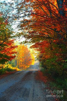 ✯ Autumn Upon A Rolling Road