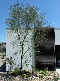 ハイセンスな平屋住まい|建築家と作るオリーブの庭|愛知の庭・外構デザイン|ティーズガーデンスクエア