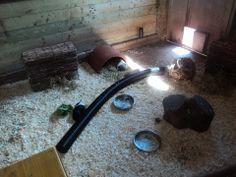 Cavia en konijnen verblijf binnen (verrijkingsmogelijkheden)
