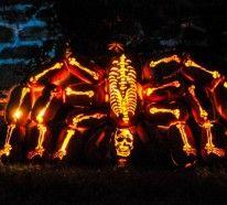 Riesige Kürbis Schnitzvorlagen für Halloween