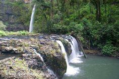 Nandroya Falls  Wooroonooran National Park, Queensland, Australia Queensland Australia, Waterfalls, National Parks, Waterfall, State Parks, Falling Waters