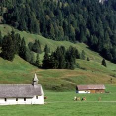 Bezau: Alpwanderung in Schönenbach - Beschreibung • Wanderung » Touren bei outdooractive.com