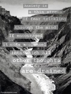 Anxiety is a thin stream of fear trickling through the mind.  If encouraged it cuts a channel into which all other thoughts are drained.