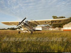 Piper PA-11 Cub Special aircraft picture