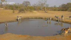Nkorho morn Sept 16 16