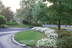 Landscape Corner Lot Design Ideas
