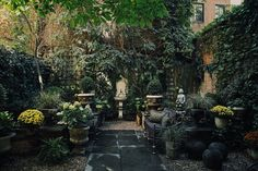 city garden with ivy covering walls, a water feature, and stone flooring