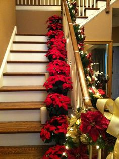 its christmas in july qvc poinsettias holiday wonderland