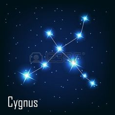 The constellation Cygnus star in the night sky Vector illustration Stock Vector