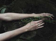 Veiny hands.