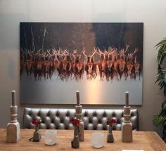 Vandaag nieuw binnen in Hallo XL! Glas en Alu-art schilderijen. Gaaf , stoer en sfeervol. Zie hieronder 3 stuks van onze nieuwe collectie  ook outdoor