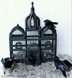 DIY Halloween Bird Cage... Country to Spooky Chic!