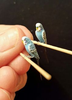 Tiny Tails Miniature Budgies, 1/12th Scale. Dollshouse.