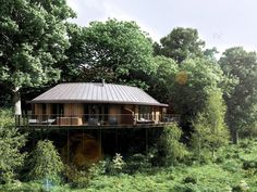 The Big Six: British tree houses | The Independent