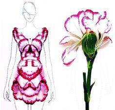 Fashion Illustrator Turns Flower Petals Into Gorgeous Dresses